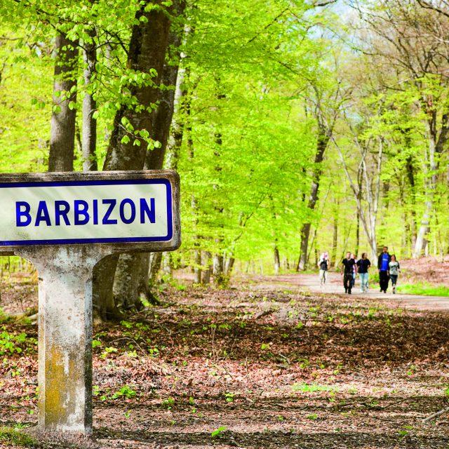 Forêt de Fontainebleau à Barbizon